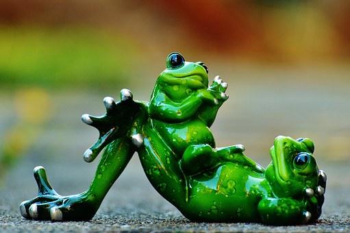 绿色的青蛙.