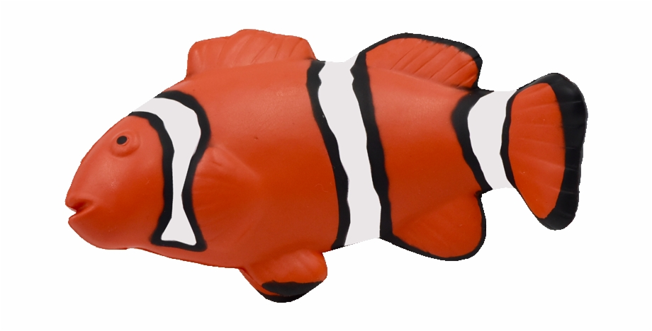 Maf 012 Clown Fish Coral Reef Fish.
