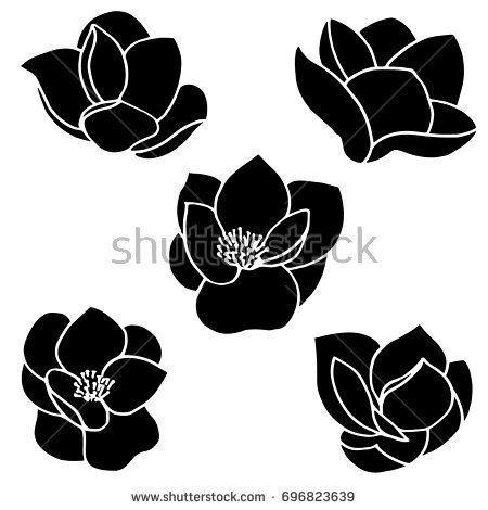 Magnolia Flower Silhouette.