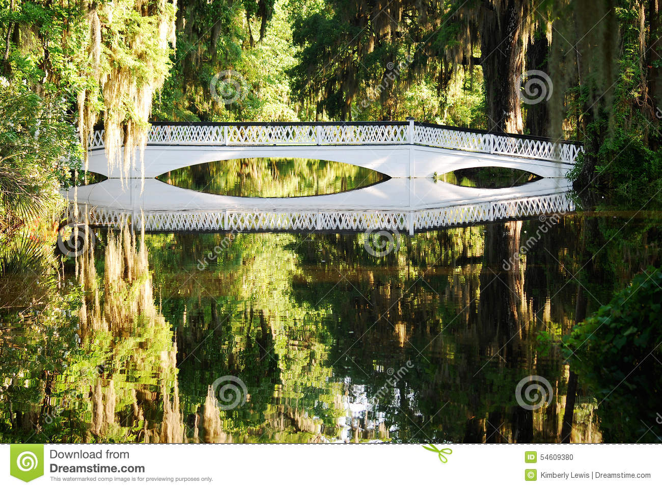 The Long White Bridge At The Magnolia Plantations And Gardens In.