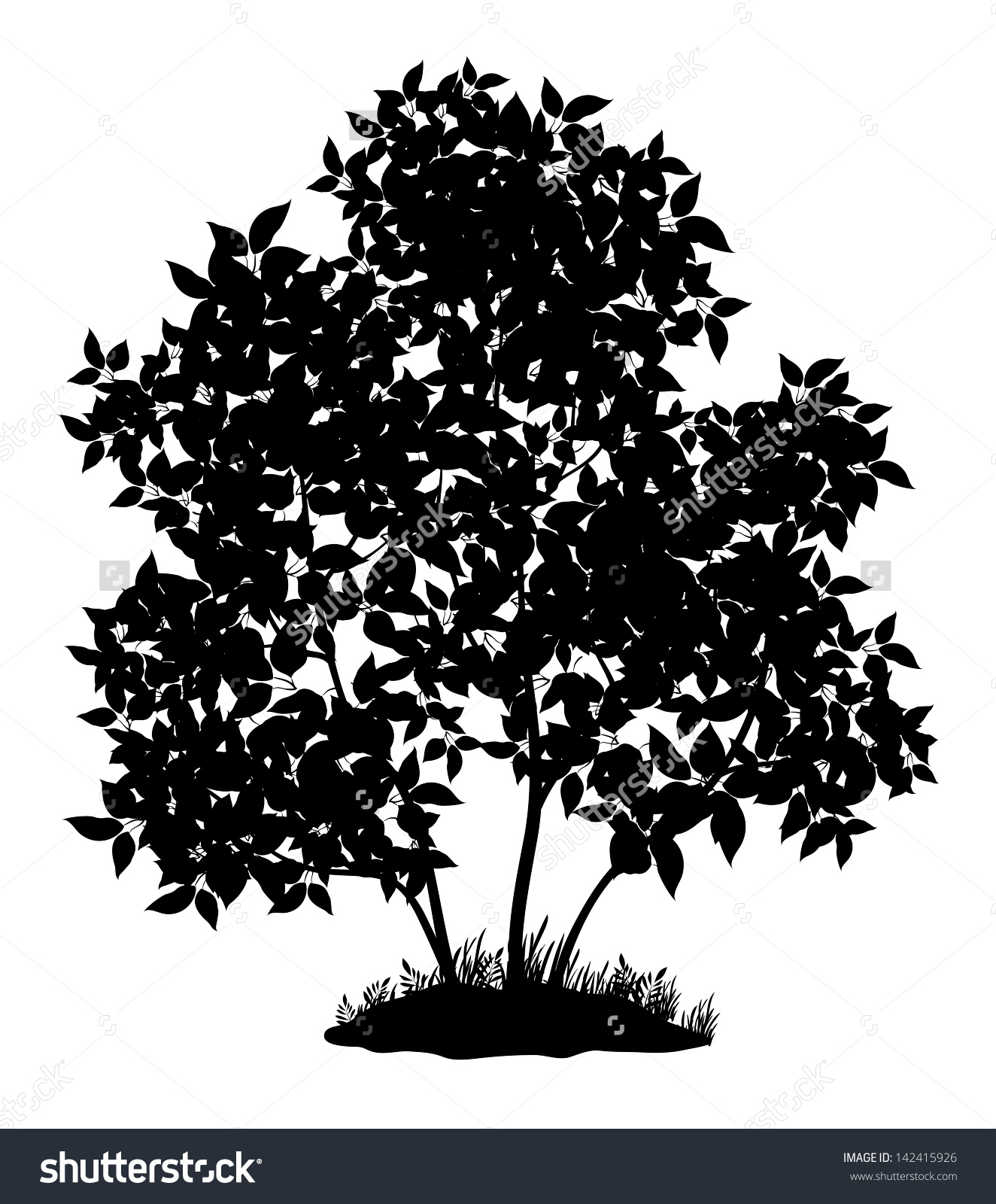 Lilac Tree Leaves Grass Black Silhouette Stock Vector 142415926.