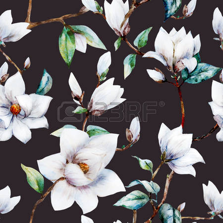 2,588 Magnolia Flower Stock Illustrations, Cliparts And Royalty.