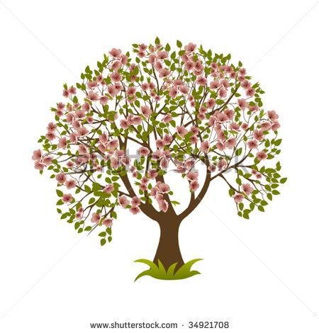 Magnolia Tree Clipart.