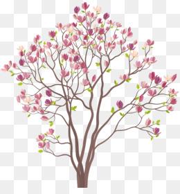 Magnolia Tree PNG.