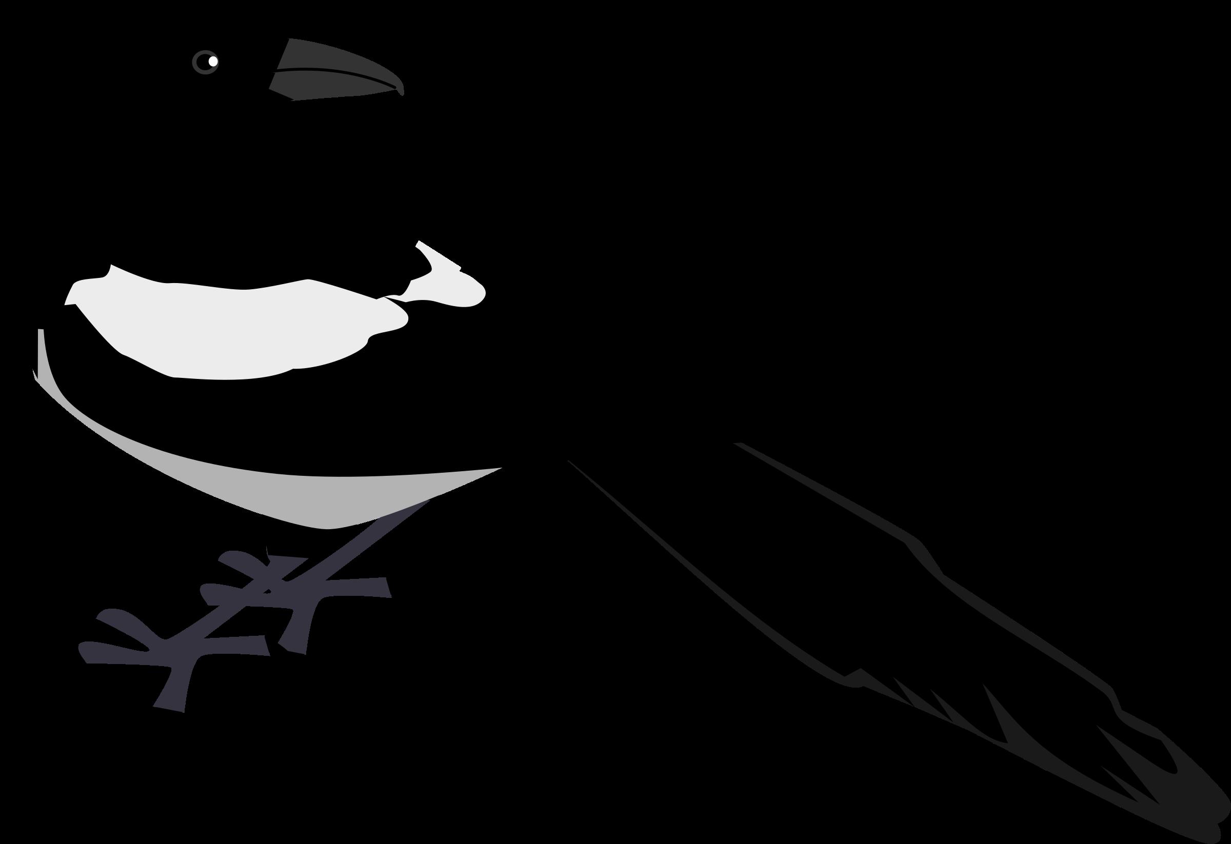Eurasian Magpie Bird Clip art.