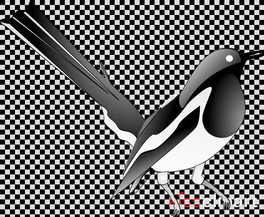 European Robin, Eurasian Magpie, Bird, transparent png image.
