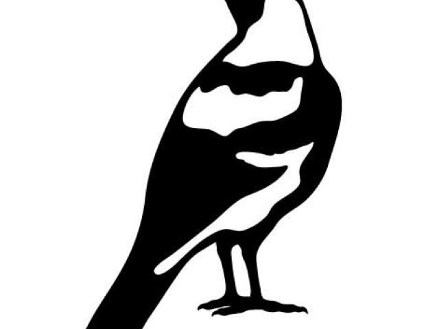 Free Magpie Clipart, Download Free Clip Art on Owips.com.