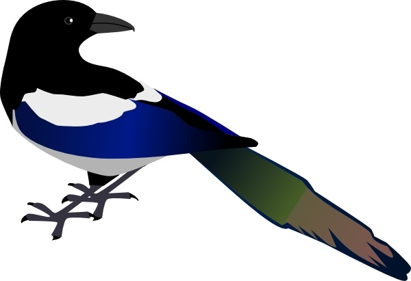 Magpie clip art Free vector in Open office drawing svg.