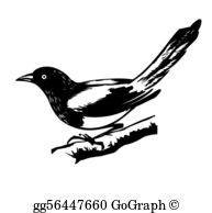 Magpie Clip Art.