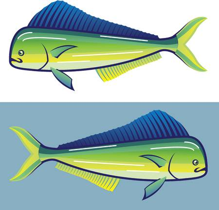 69 Mahi Mahi Stock Vector Illustration And Royalty Free Mahi.