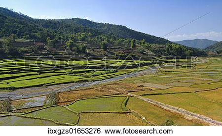 "Stock Images of ""Mai Chau Valley, Vietnam, Asia"" ibxgzs01653276."