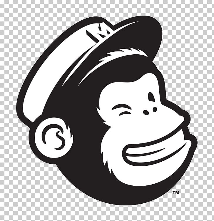 MailChimp Email Marketing E.