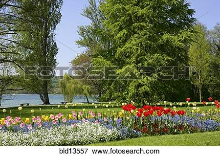Picture of Germany Lake Constance, Mainau Island bld13557.