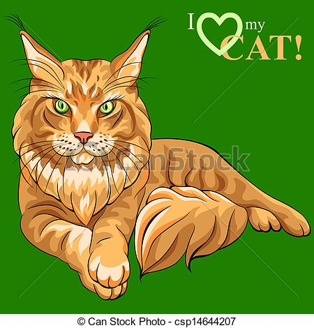 Coon Stock Illustrations. 795 Coon clip art images and royalty.