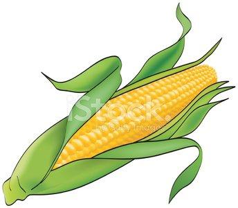 Corn clipart mais, Corn mais Transparent FREE for download.