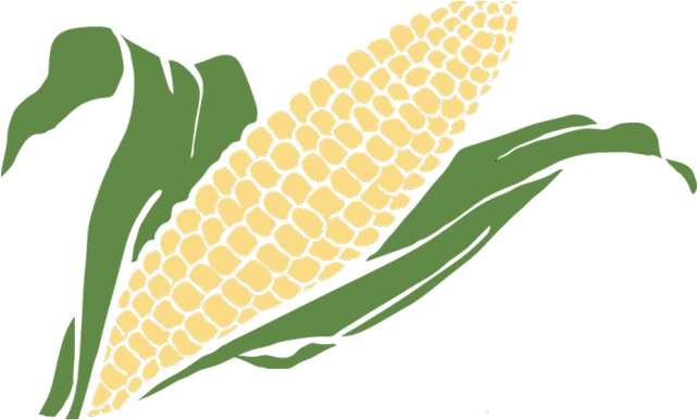 Grain Clipart Corn Grain.