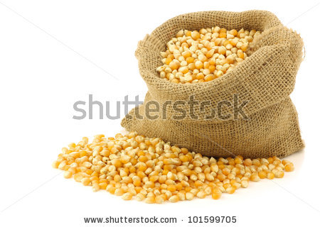 Corn Grain Stock Photos, Royalty.