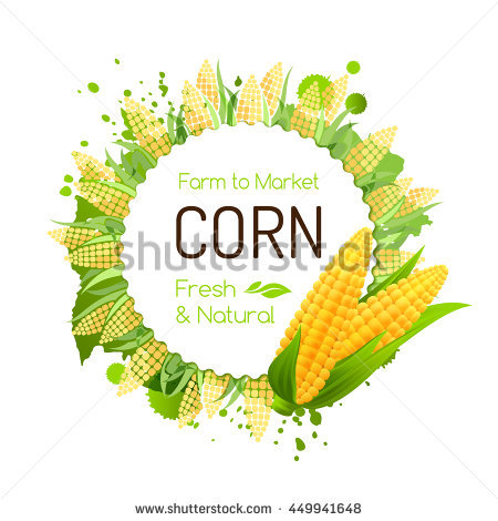Maize varieties clipart #13