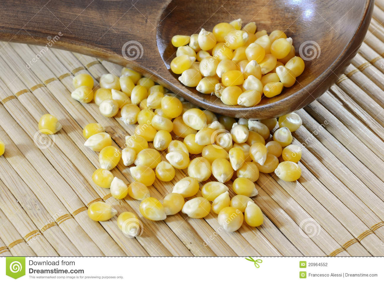 Corn Seeds Royalty Free Stock Photography.