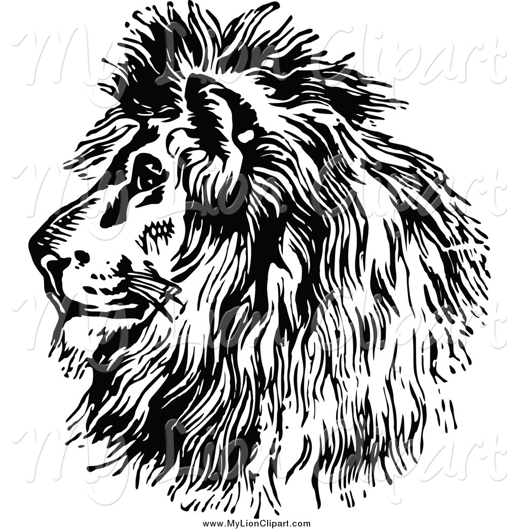 Majestic Lion Head Clipart.