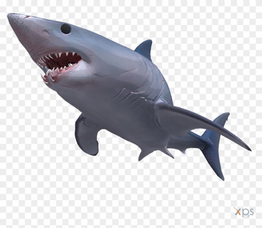 mako shark clipart #9