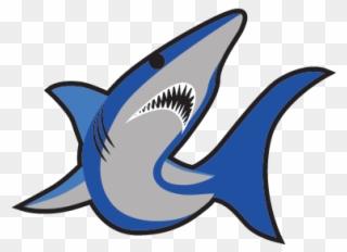 Free PNG Mako Shark Clip Art Download.