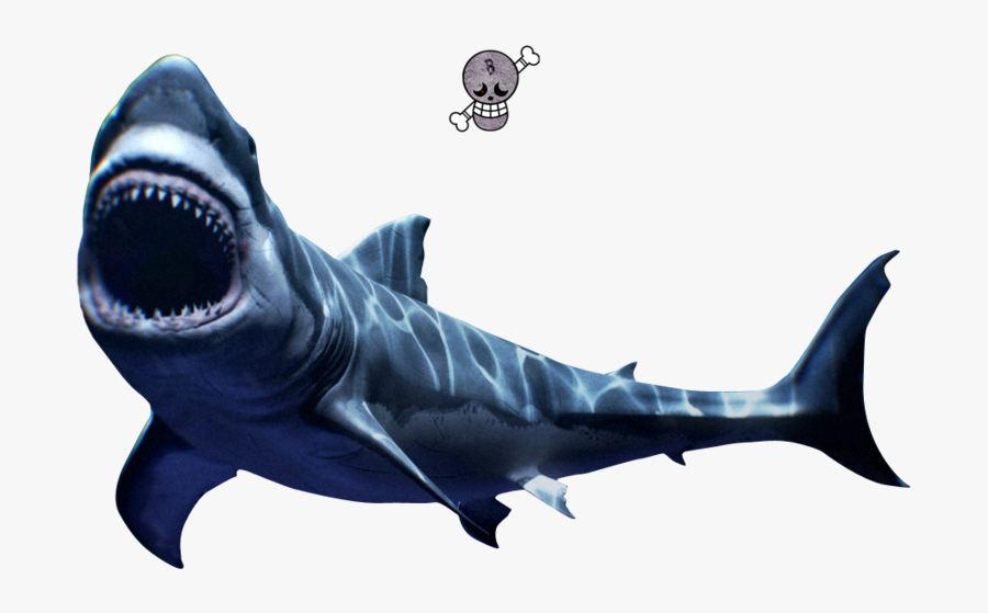 Mako Shark Png , Free Transparent Clipart.