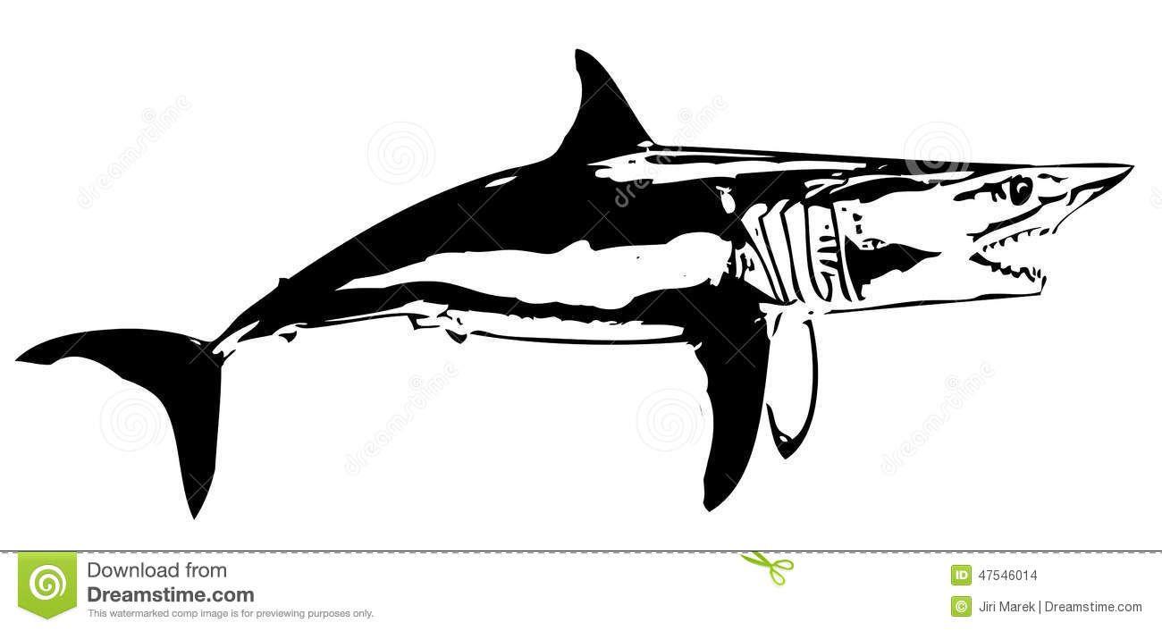 mako shark clipart #10