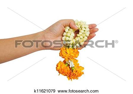 Stock Photograph of woman give a Malai The flower in Th k11621079.