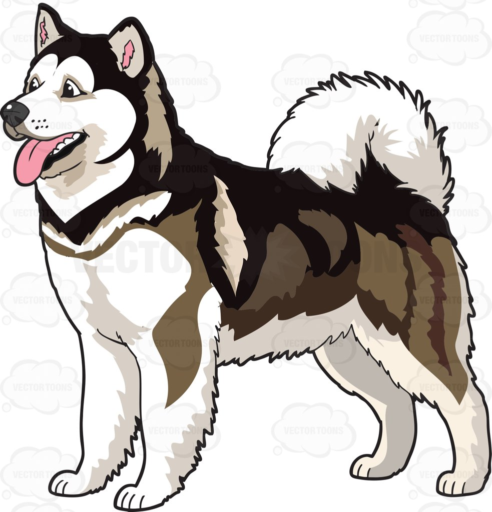An Adorable Alaskan Malamute Cartoon Clipart.