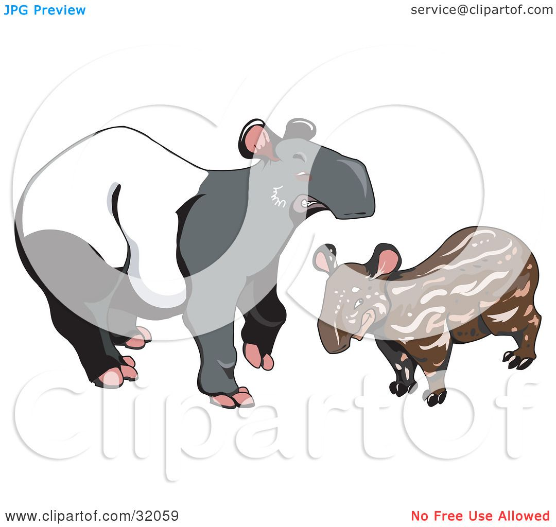 Clipart Illustration of a Young Brown Malayan Tapir (Tapirus.