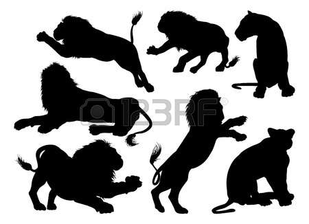 161 Male And Female Lion Stock Vector Illustration And Royalty.