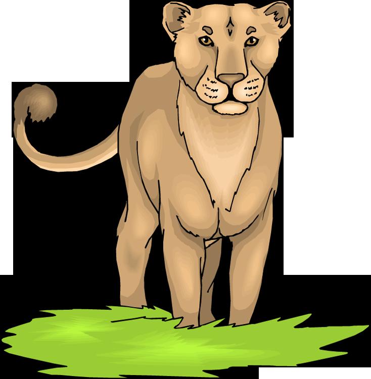 Female Lion Clipart.