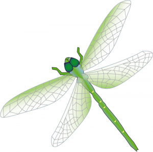 Dragonfly Clip Art Download.