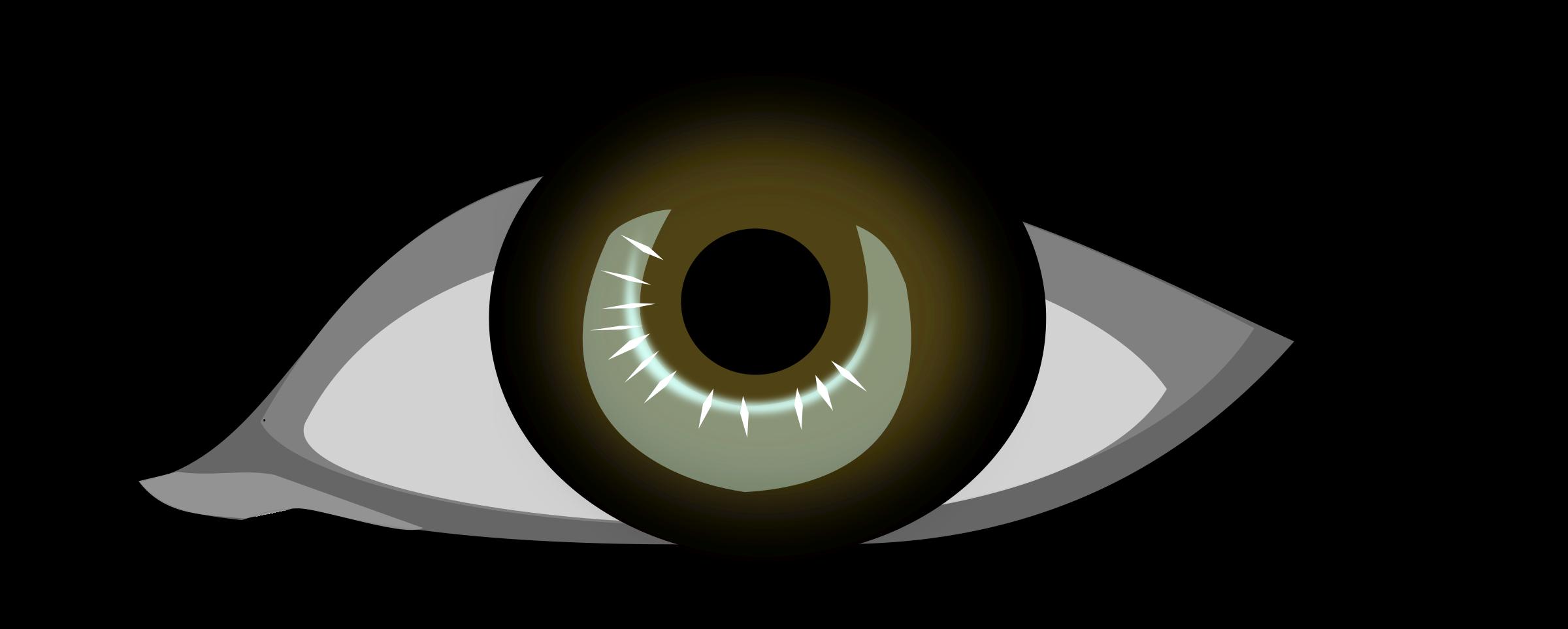 Male Eye Clipart.