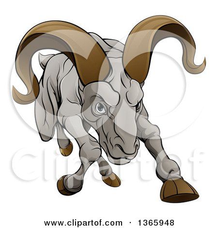 Adorable White Male Sheep, A Ram, With Brown Curly Horns Clipart.