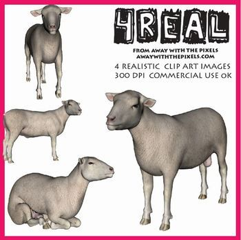 48 Best images about Realistic Animal Clip Art and Graphics on.