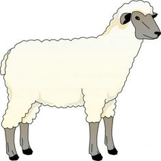 Sheep Outline Drawing Coloring Page.