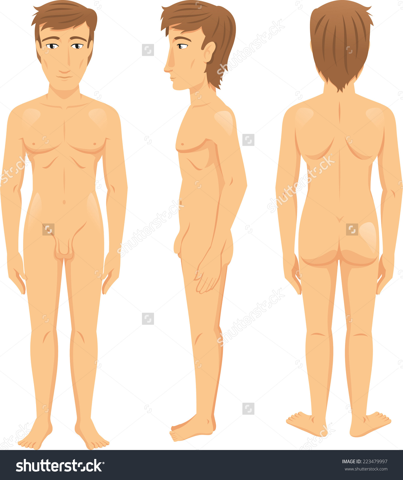 Male Body Front Side Back View Stock Vector 223479997.