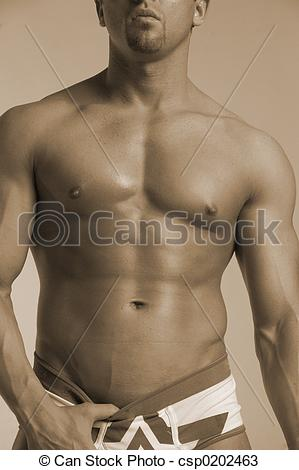 Stock Photos of sepia male abs.