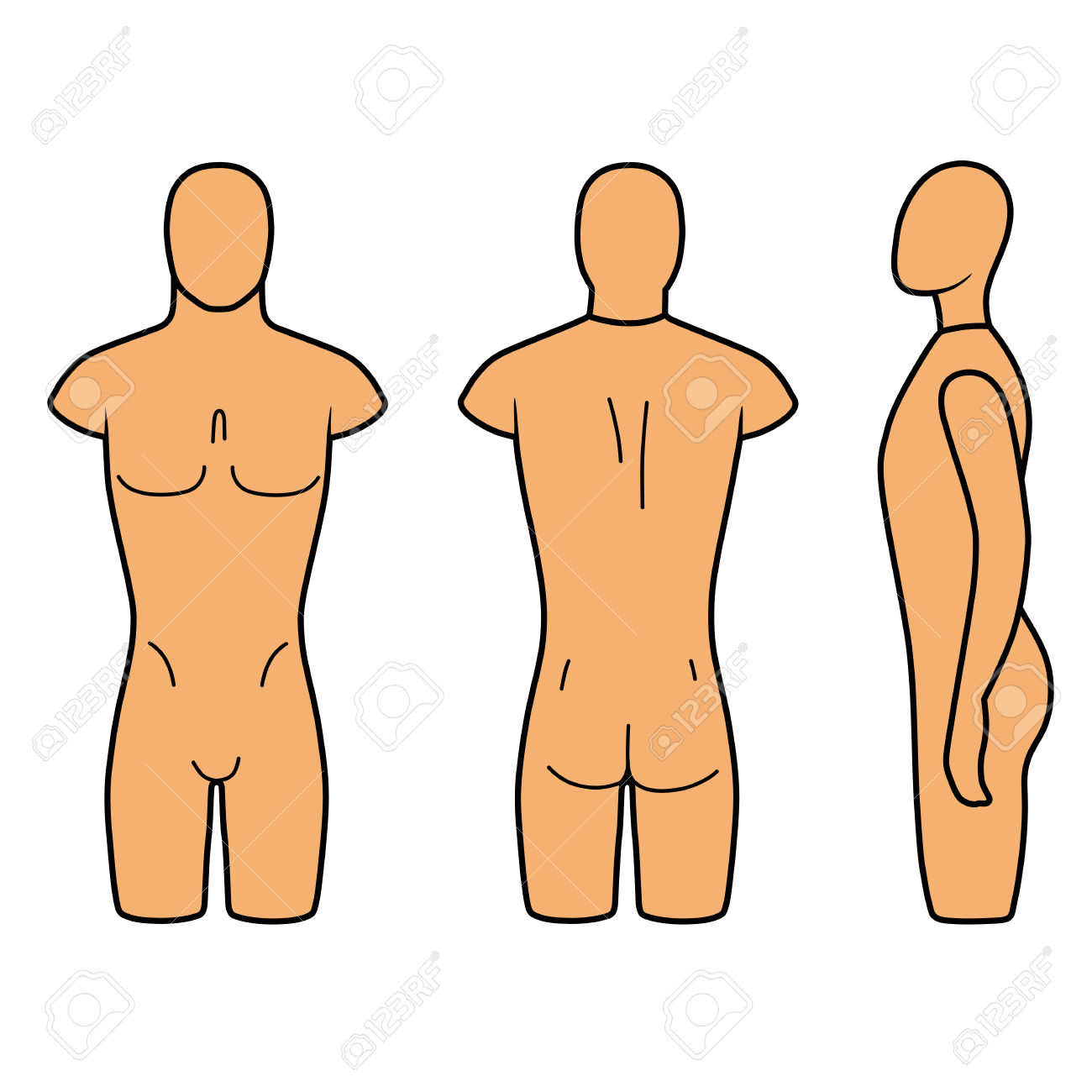 Male Mannequin Outlined Torso (front, Back, Side View). Vector.