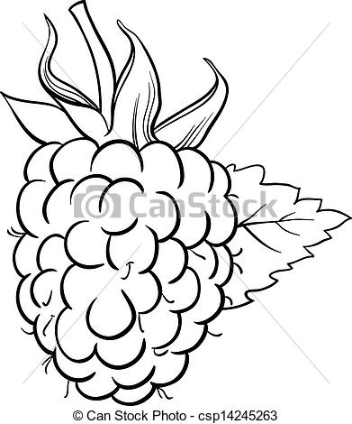 Clip Art Vector of raspberry illustration for coloring book.