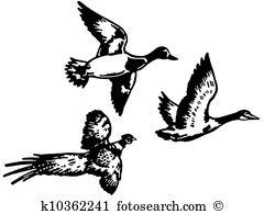 Duck flight Illustrations and Clipart. 110 duck flight royalty.
