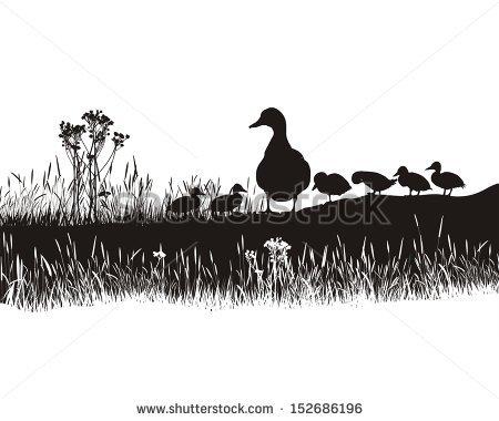 Duck Family Banque d'Image Libre de Droit, Photos, Vecteurs et.