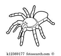 Latrodectus Clip Art Vector Graphics. 41 latrodectus EPS clipart.