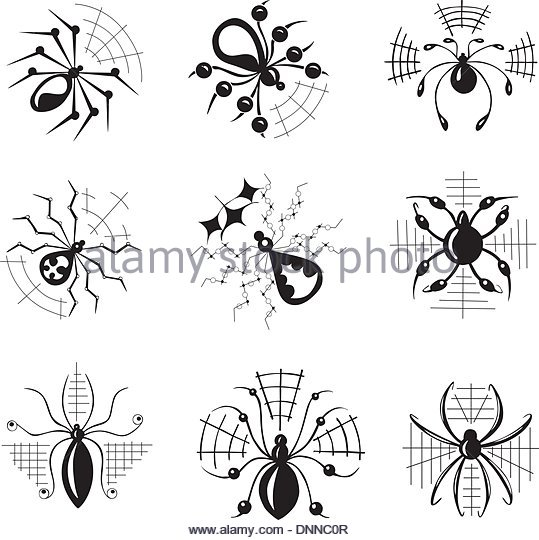 Widow Spiders Stock Photos & Widow Spiders Stock Images.