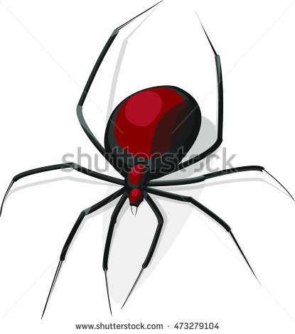 Latrodectus Stock Photos, Royalty.