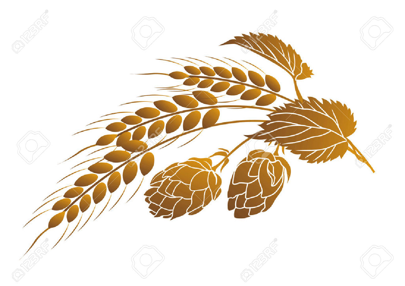 Iillustration Of Hops And Ears Of Wheat Royalty Free Cliparts.