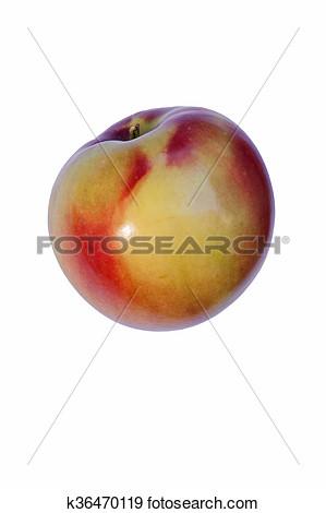 Mcintosh apple clipart.