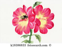 Malva Stock Illustrations. 23 malva clip art images and royalty.